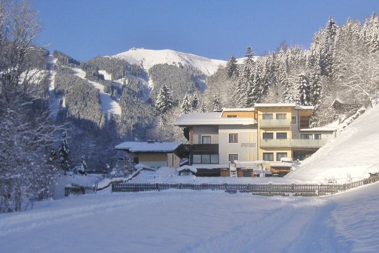 Dominik - Apartment - Zell am See