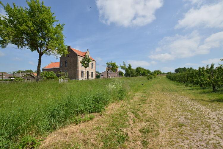 vakantiehuis België, Limburg, Mettekoven vakantiehuis BE-0007-73