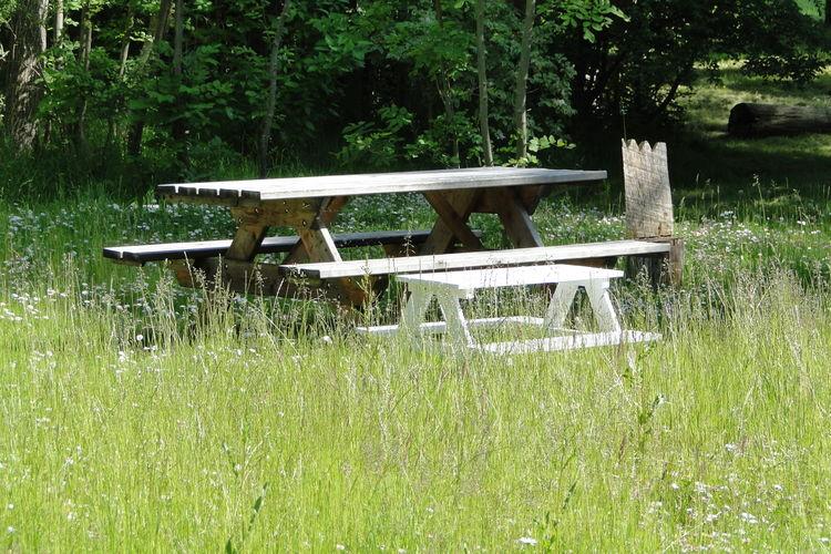 Ferienwohnung Am Breitling 2 (2329452), Boiensdorf, Ostseeküste Mecklenburg-Vorpommern, Mecklenburg-Vorpommern, Deutschland, Bild 19