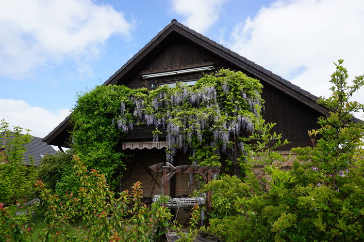 Vakantiehuizen Duitsland | Ostsee | Appartement te huur in Neu-Ludershagen   met wifi 2 personen