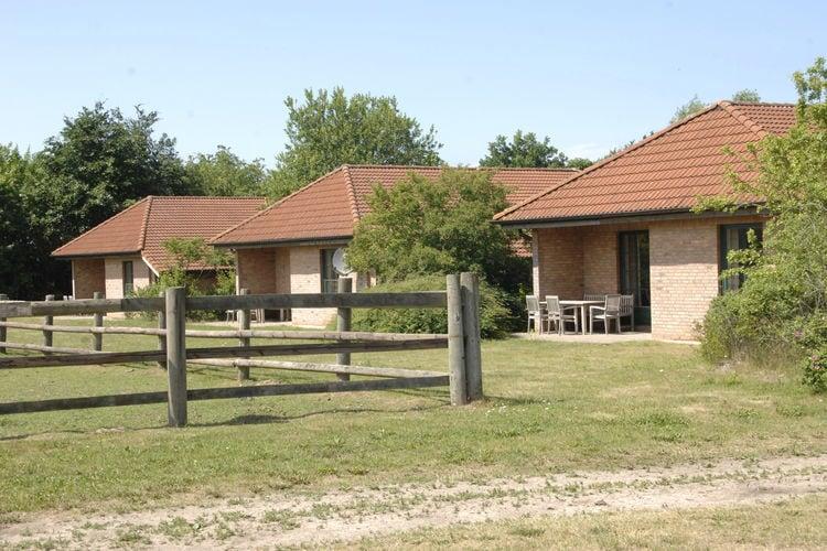 Vakantiehuis  met wifi  Ribnitz-Damgarten  Familien-Ferienhaus auf einem Reiterhof