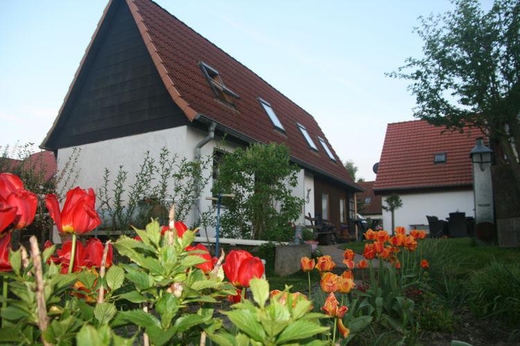 Ferienhaus Gersdorf XL (2329457), Gersdorf (DE), Ostseeküste Mecklenburg-Vorpommern, Mecklenburg-Vorpommern, Deutschland, Bild 2