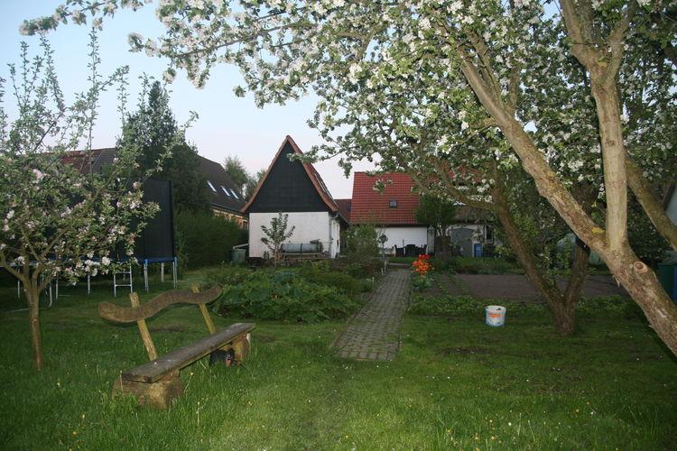 Ferienhaus Gersdorf XL (2329457), Gersdorf (DE), Ostseeküste Mecklenburg-Vorpommern, Mecklenburg-Vorpommern, Deutschland, Bild 18