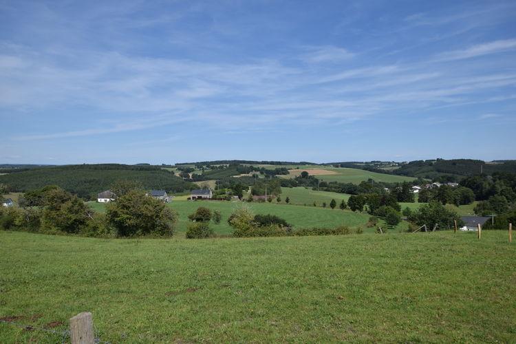 Ferienhaus Le gîte de Pironval (2301958), Bertogne, Luxemburg (BE), Wallonien, Belgien, Bild 36