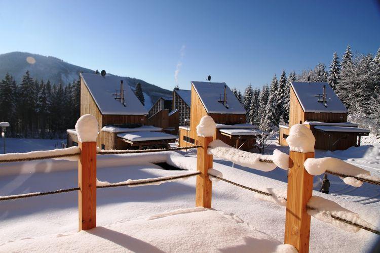 vakantiehuis Tsjechië, Reuzengebergte - Jzergebergte, Harrachov vakantiehuis CZ-51246-17
