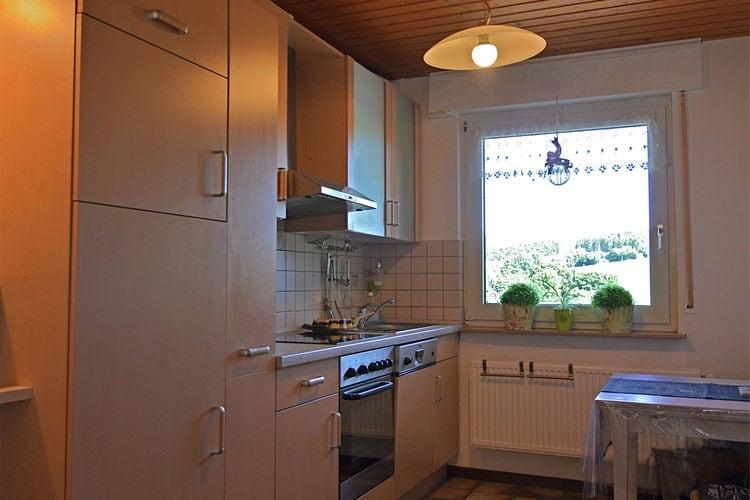 vakantiehuis Duitsland, Sauerland, Winterberg-Grönebach vakantiehuis DE-59955-175