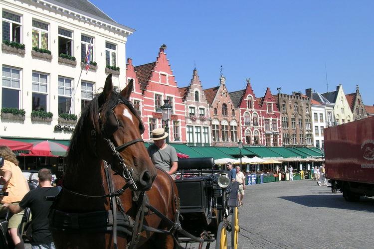 Ferienwohnung B&B Minne (2292573), Brugge, Westflandern, Flandern, Belgien, Bild 15
