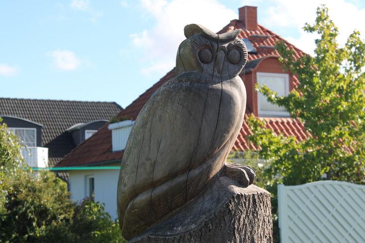 Ferienwohnung Aranka 206 HH (2301075), Nienhagen, Ostseeküste Mecklenburg-Vorpommern, Mecklenburg-Vorpommern, Deutschland, Bild 11