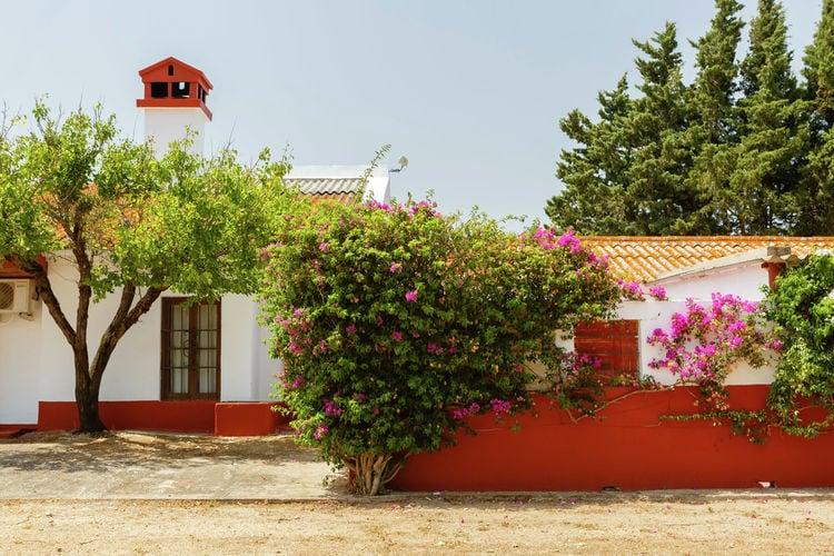 Karakteristiek vakantiehuis met zwembad, midden in de natuur en vlakbij strand