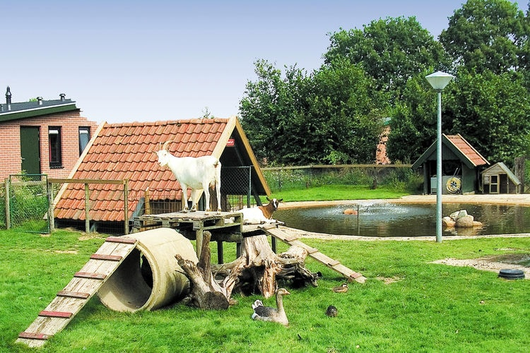 Bungalow Nederland, Overijssel, Holten Bungalow NL-7451-12