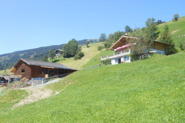 Appartement Oostenrijk, Salzburg, Hollersbach im Pinzgau Appartement AT-5731-27