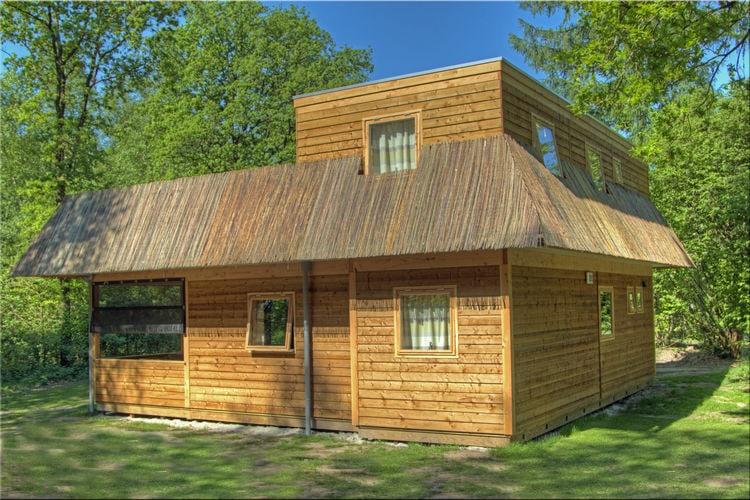 Bijzondere woning met groot dakterras, gelegen op bosrijk vakantiepark
