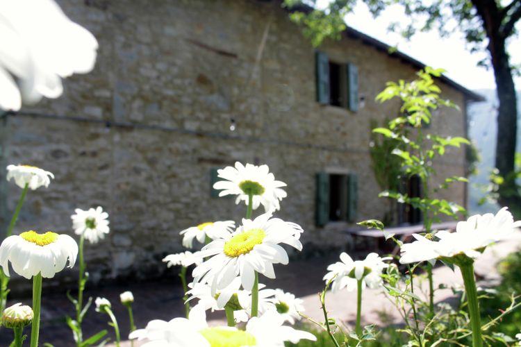 Borgo Belvedere Villa Otto - Accommodation - Lizzano in Belvedere