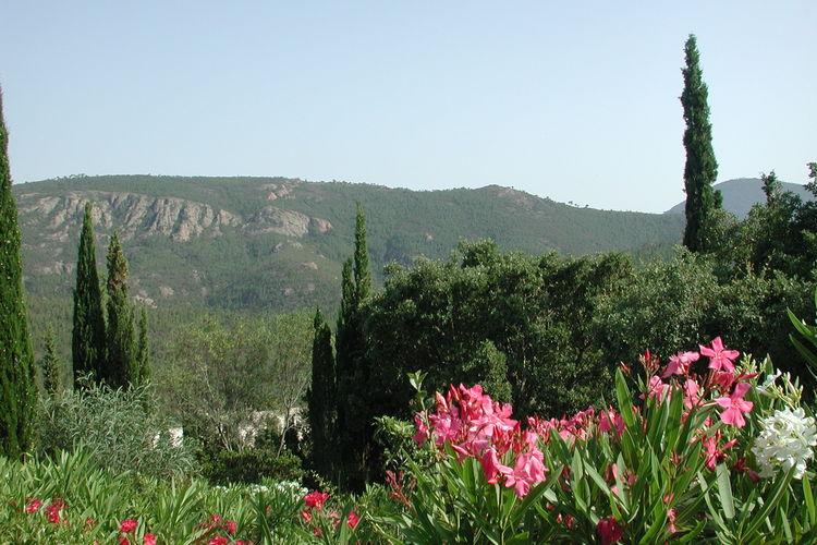 Villa Frankrijk, Corse, Oletta Villa FR-00009-561