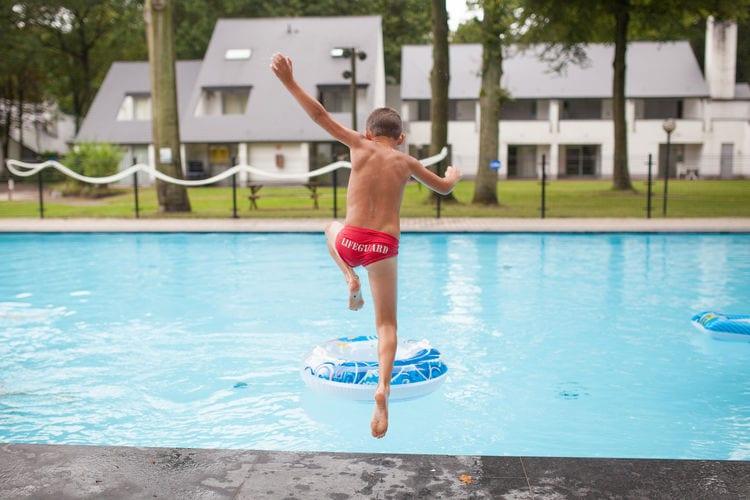 Appartement België, Limburg, Houthalen- Helchteren Appartement BE-3530-24