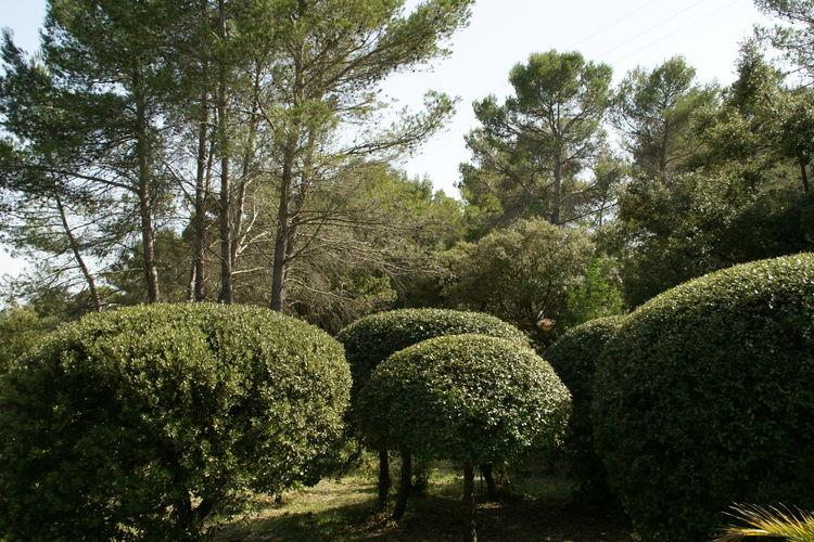 vakantiehuis Frankrijk, Provence-alpes cote d azur, Draguignan vakantiehuis FR-00021-18