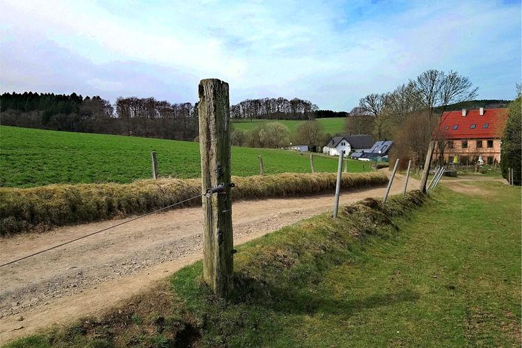 Alpaka-Farm