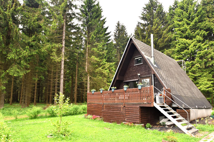Wanderhütte am Rennsteig - Accommodation - Neuhaus am Rennweg