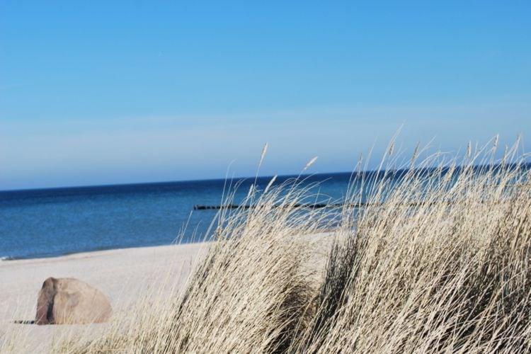 Vakantiehuis  met wifi  Bastorf  Baltic- Sky- Ferienwohnung
