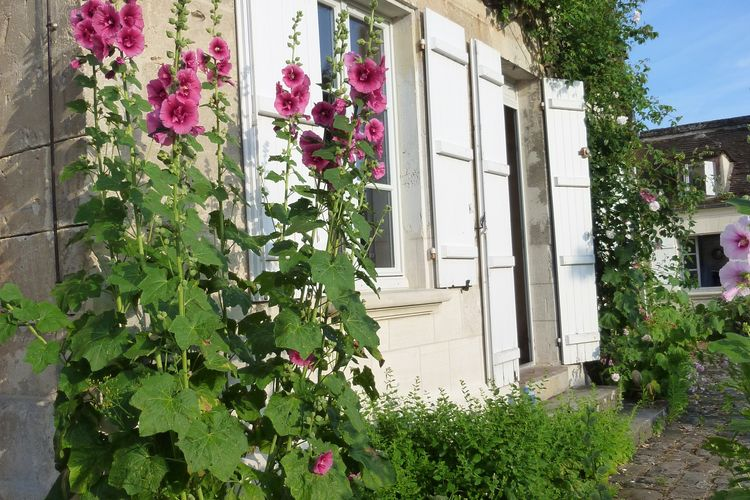 vakantiehuis Frankrijk, Picardie, Machemont vakantiehuis FR-60150-01