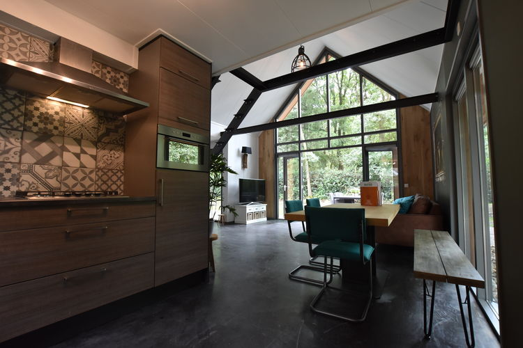 Vakantiewoning Nederland, Drenthe, Norg Villa NL-0021-59