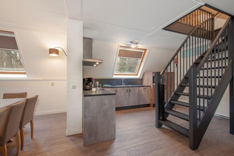 Villa Nederland, Noord-Brabant, Oosterhout Villa NL-4904-43