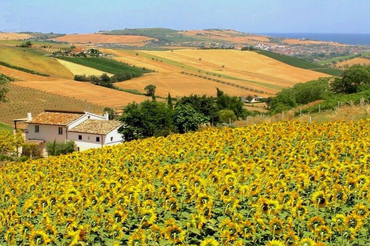 Boerderij Italië, Marche, Fermo Boerderij IT-63900-02