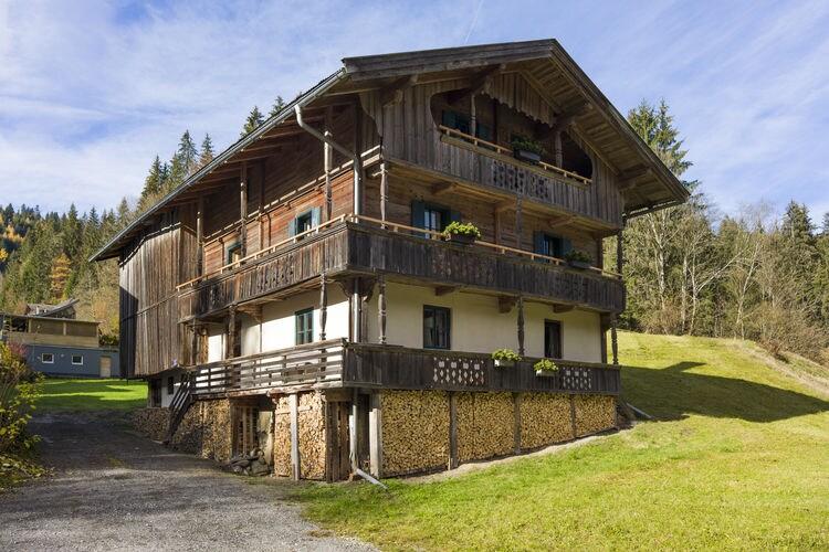 Brummer - Accommodation - Hopfgarten im Brixental