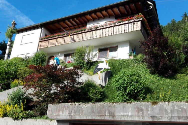Appartement  met wifi  Bad Rippoldsau-Schapbach  Schapbach