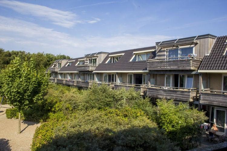 Appartement met zwembad met wifi  WaddenRésidence Terschelling 2