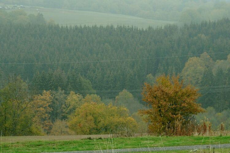 Chalet Duitsland, Eifel, Gerolstein - Hinterhausen Chalet DE-54568-40