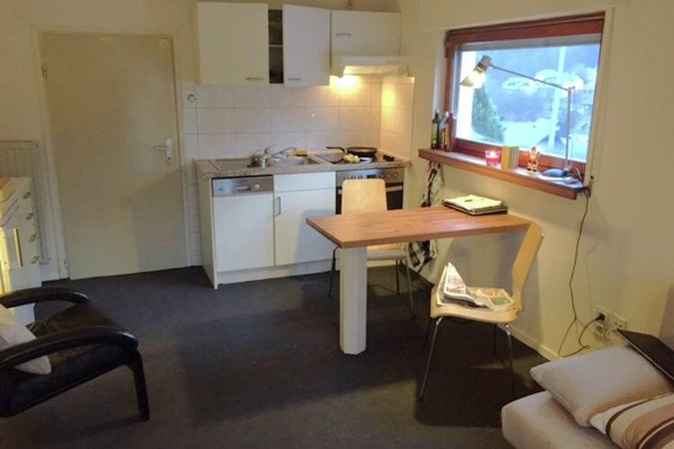 Appartement Duitsland, Sauerland, Willingen Appartement DE-34508-148