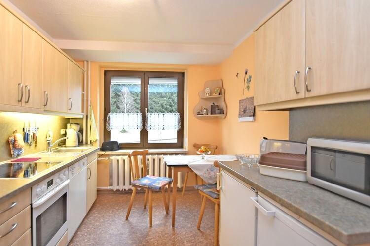 Appartement Duitsland, Saksen, Jöhstadt Appartement DE-09477-02