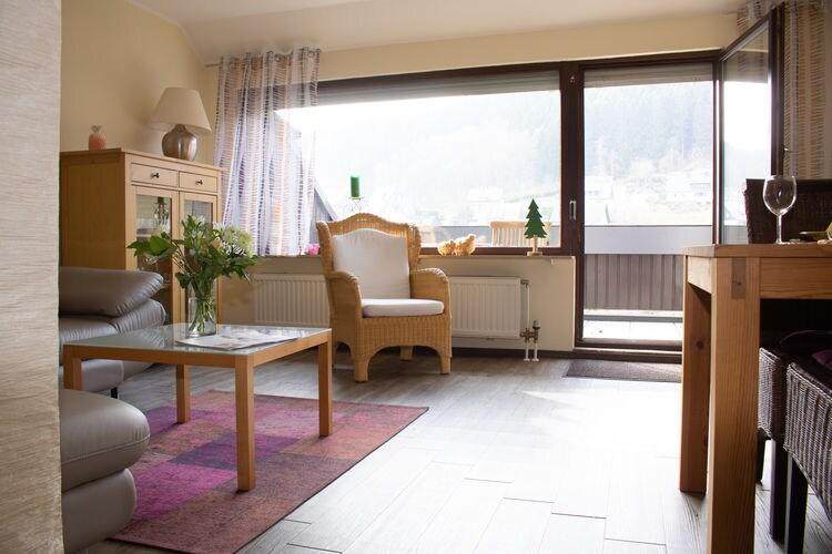 Vakantiehuizen Winterberg-OT-Silbach te huur Winterberg-OT-Silbach- DE-59955-228   met wifi te huur