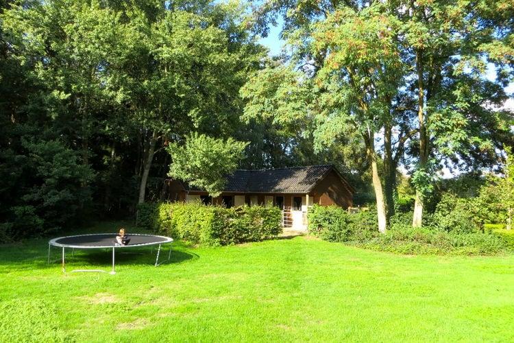 vakantiehuis Nederland, Overijssel, Wesepe vakantiehuis NL-8124-02