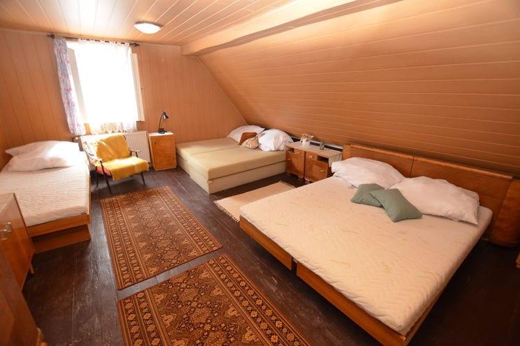 vakantiehuis Tsjechië, Reuzengebergte - Jzergebergte, Krásná Lípa vakantiehuis CZ-40747-05