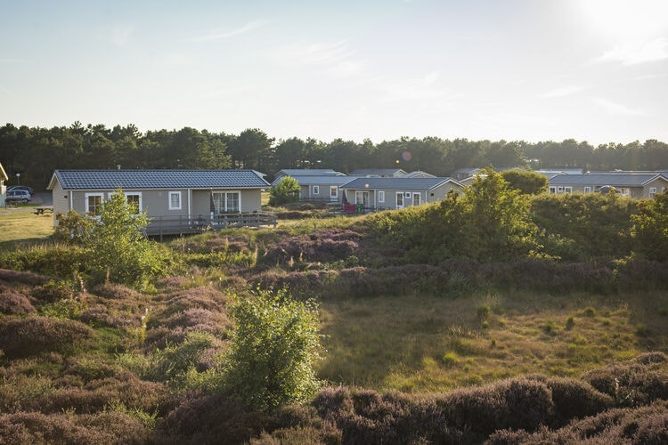 Chalet Frisian Islands