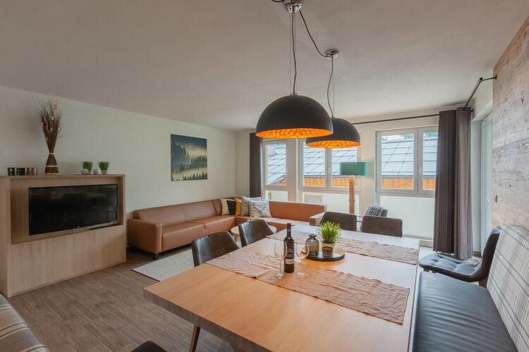 Vakantiehuizen Oostenrijk | Salzburg | Appartement te huur in Dienten   met wifi 6 personen