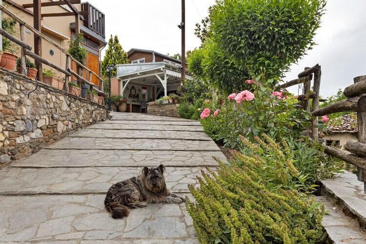 vakantiehuis Griekenland, grcha, Βράσταμα vakantiehuis GR-63100-05
