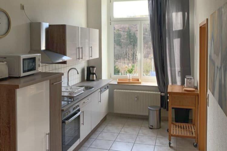 Villa Duitsland, Saksen, Grunhainichen-Borstendorf Villa DE-09579-10