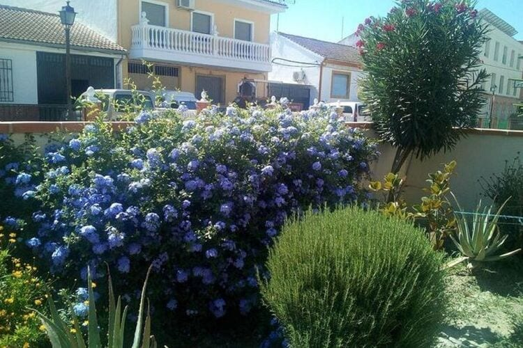 Villa Spanje, Andalucia, Fuente Vaqueros Villa ES-18340-01