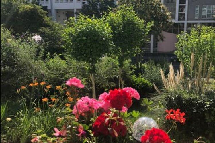 Appartement Duitsland, Noordrijn-Westfalen, Bonn Appartement DE-00040-53