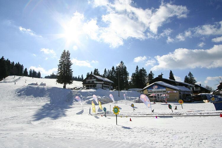 Ferienanlage Grafenmatt, Feldberg