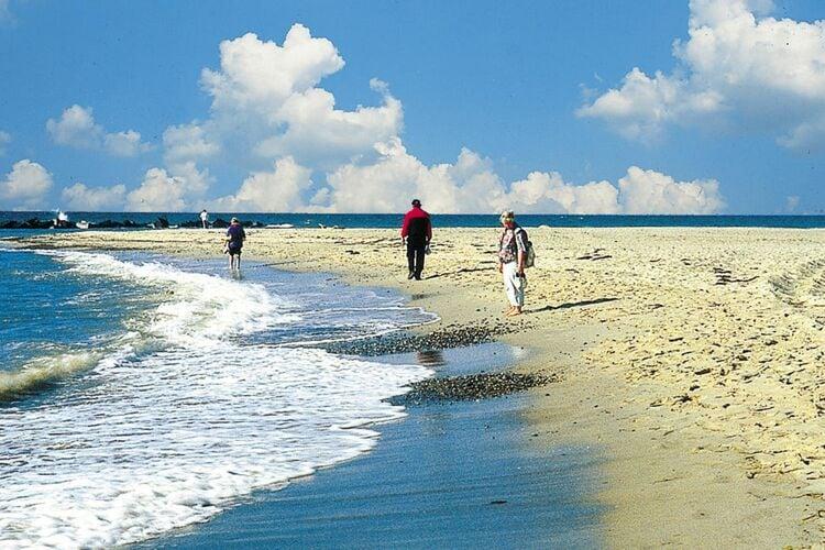 Doppelhaushälfte, Born am Darß Ferienwohnung  Fischland Darß Zingst