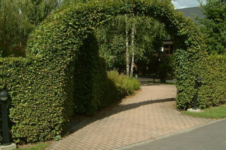 Ferienhaus Vakantiepark les Onays 1 (60030), Wibrin, Luxemburg (BE), Wallonien, Belgien, Bild 10