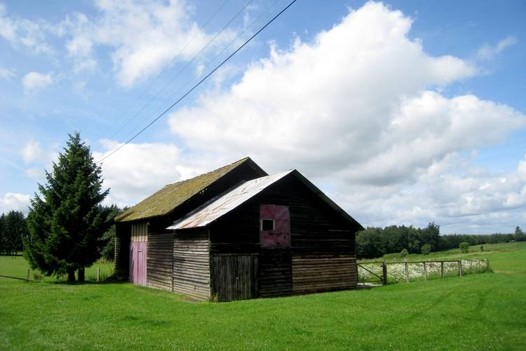 Ferienhaus Ferme des Logis (59116), Longchamps, Luxemburg (BE), Wallonien, Belgien, Bild 20