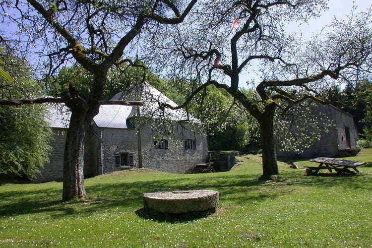Ferienhaus Le Moulin de Soulme (59600), Soulme, Namur, Wallonien, Belgien, Bild 31
