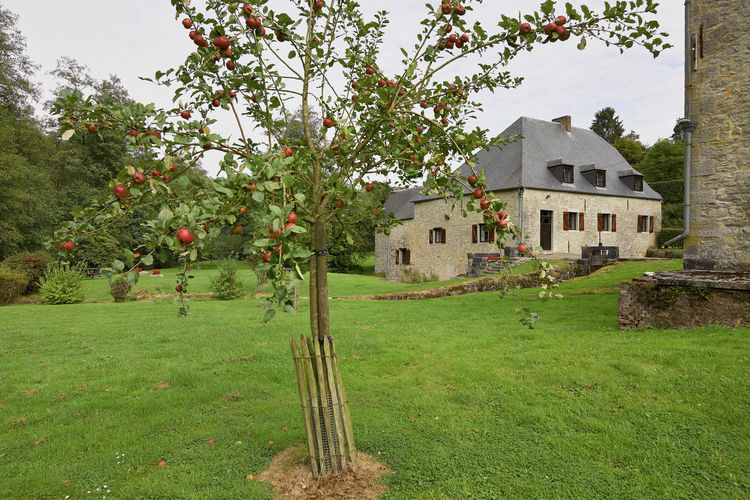 Ferienhaus Le Moulin de Soulme (59600), Soulme, Namur, Wallonien, Belgien, Bild 28
