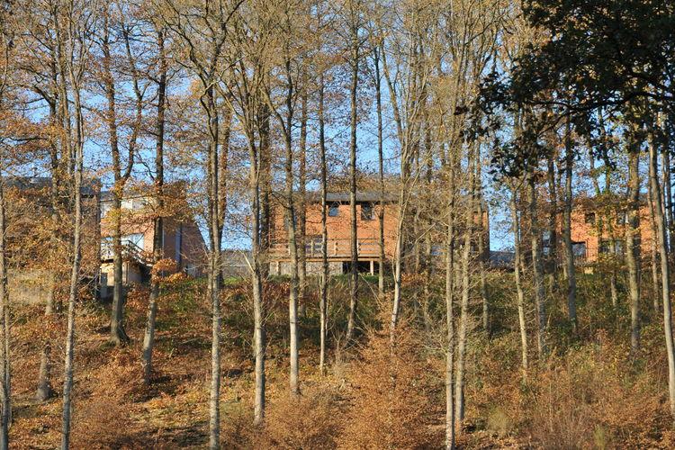 Ferienhaus Domaine du Bonsoy 3 (59575), Hastière, Namur, Wallonien, Belgien, Bild 6