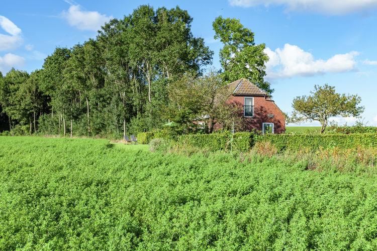 Ferienhaus Dollart Sud (59938), Finsterwolde, , Groningen, Niederlande, Bild 4